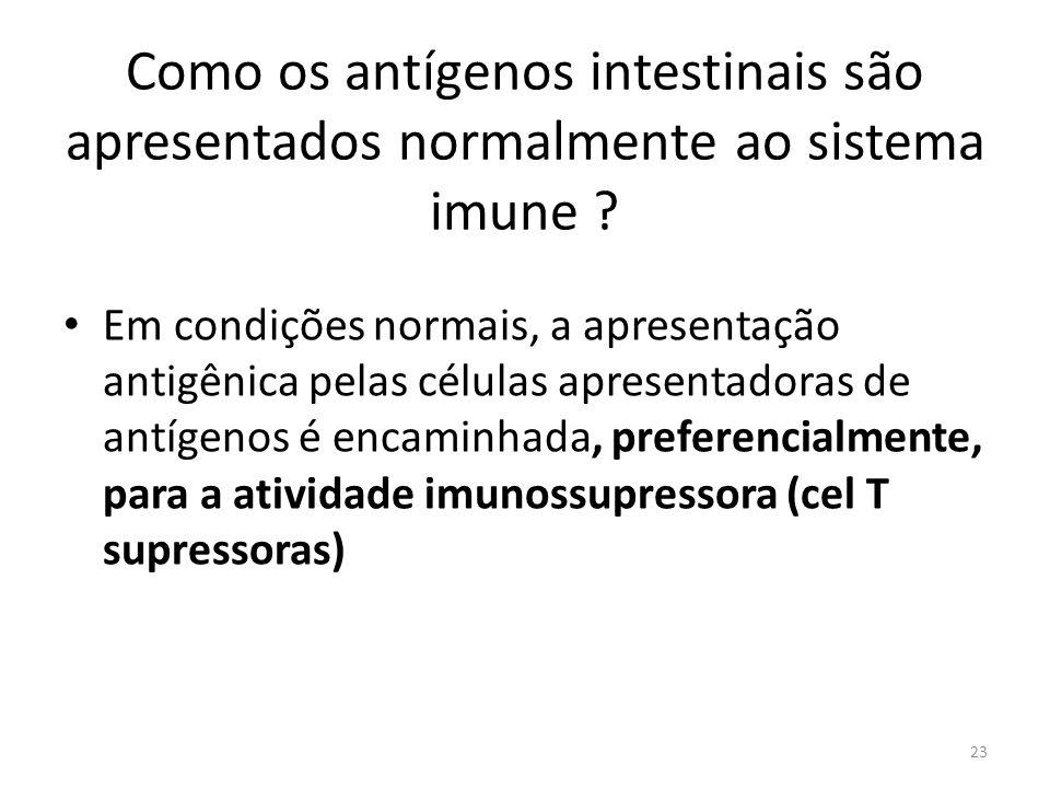 Como os antígenos intestinais são apresentados normalmente ao sistema imune
