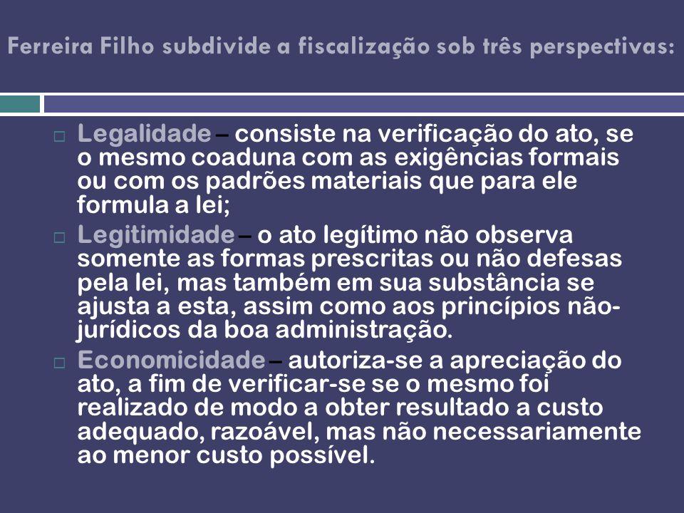 Ferreira Filho subdivide a fiscalização sob três perspectivas: