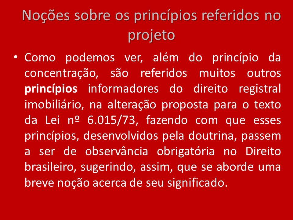 Noções sobre os princípios referidos no projeto