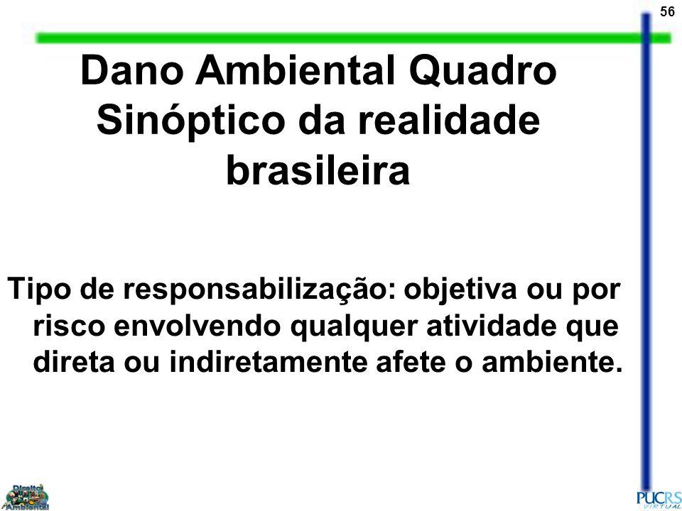 Dano Ambiental Quadro Sinóptico da realidade brasileira