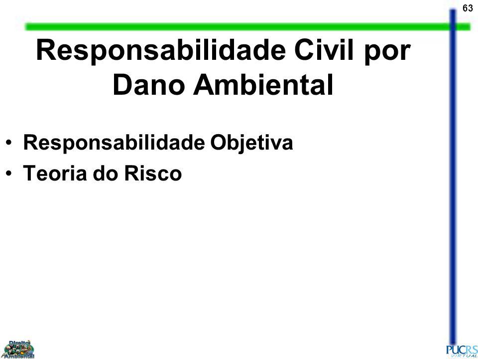 Responsabilidade Civil por Dano Ambiental