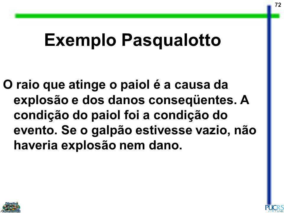 Exemplo Pasqualotto