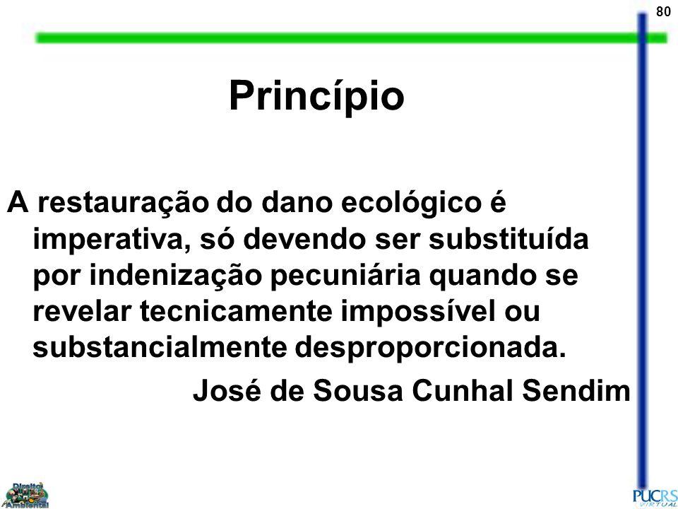 Princípio