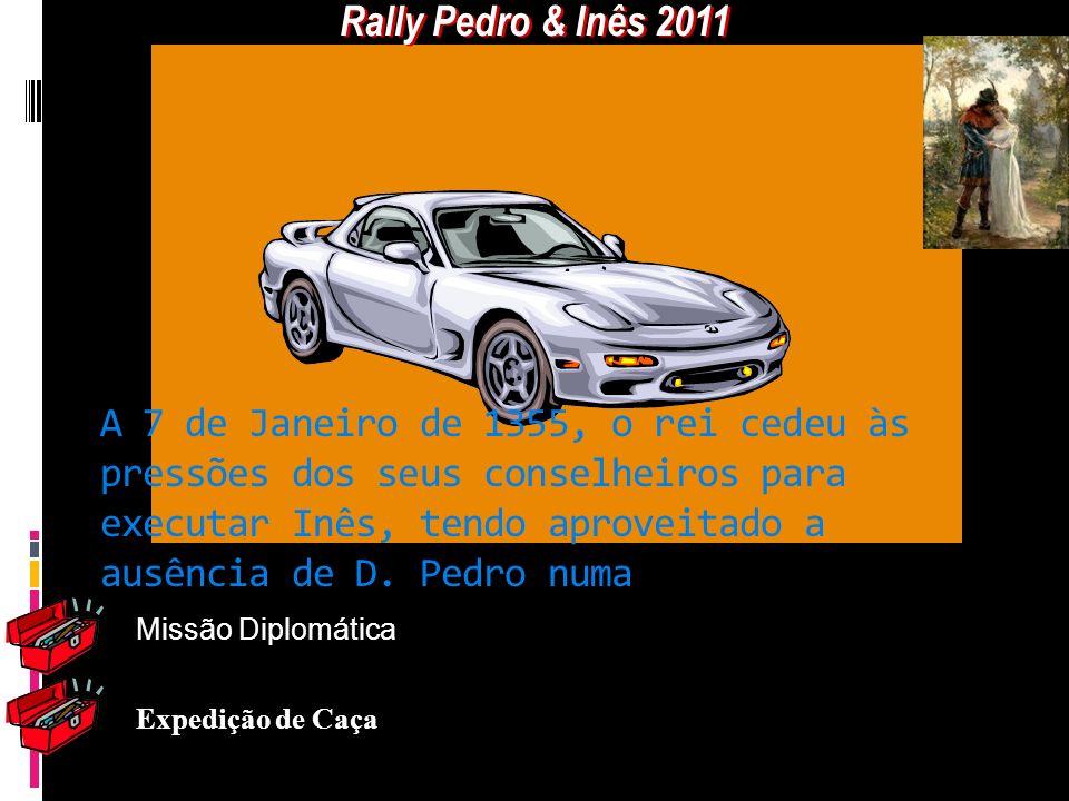 Rally Pedro & Inês 2011