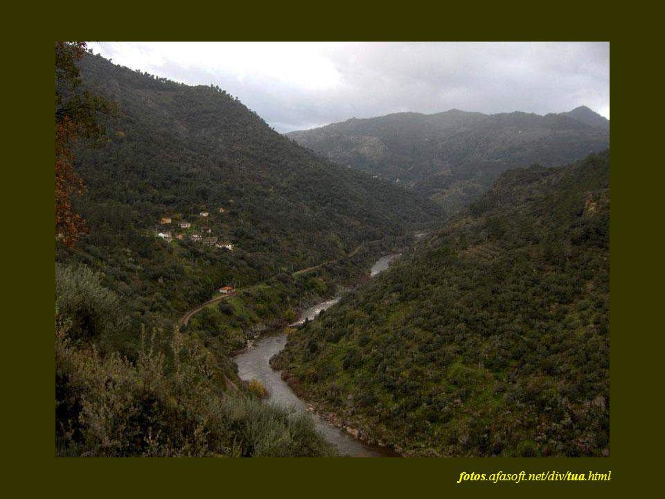 fotos.afasoft.net/div/tua.html