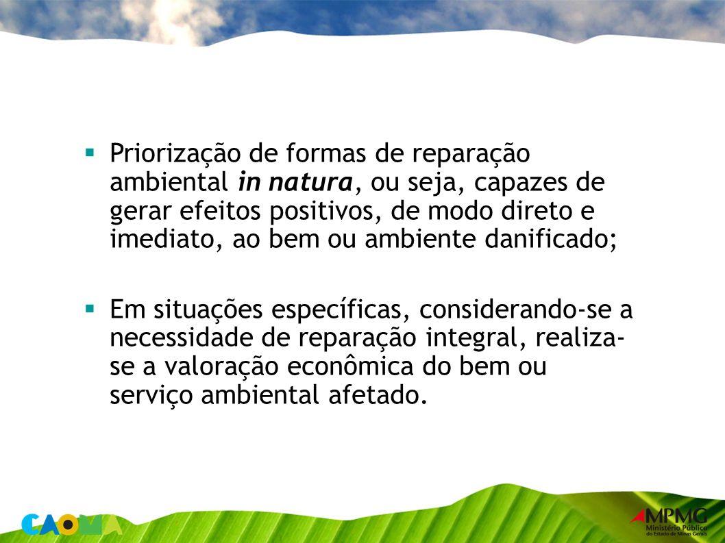 Priorização de formas de reparação ambiental in natura, ou seja, capazes de gerar efeitos positivos, de modo direto e imediato, ao bem ou ambiente danificado;