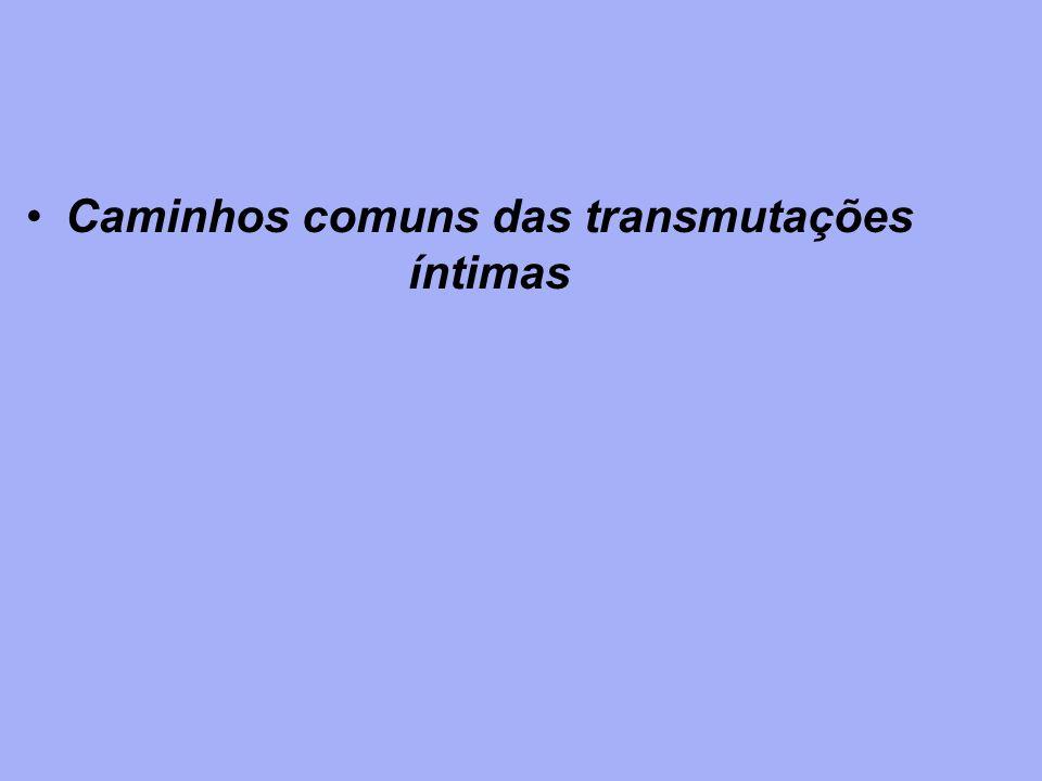 Caminhos comuns das transmutações íntimas