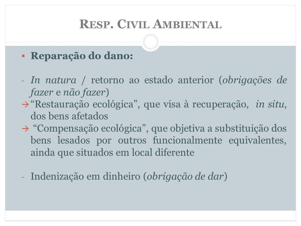 Resp. Civil Ambiental Reparação do dano: