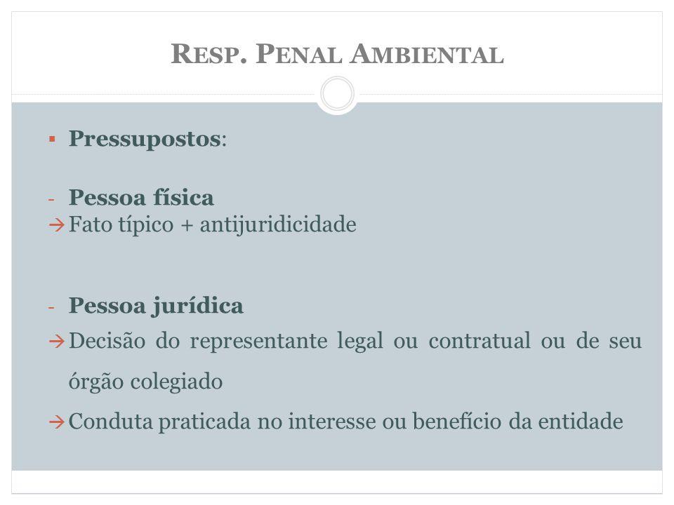 Resp. Penal Ambiental Pressupostos: Pessoa física