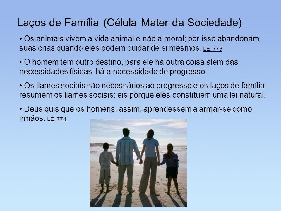 Laços de Família (Célula Mater da Sociedade)