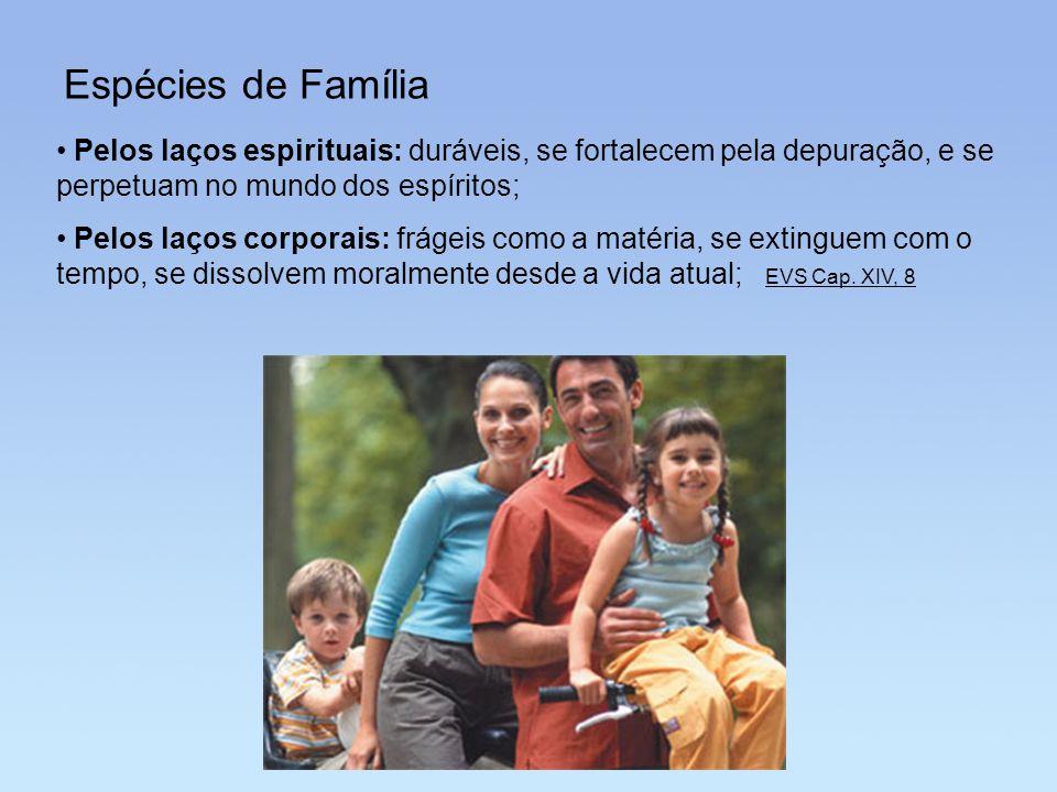 Espécies de Família Pelos laços espirituais: duráveis, se fortalecem pela depuração, e se perpetuam no mundo dos espíritos;