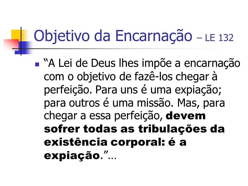 Objetivo da Encarnação – LE 132