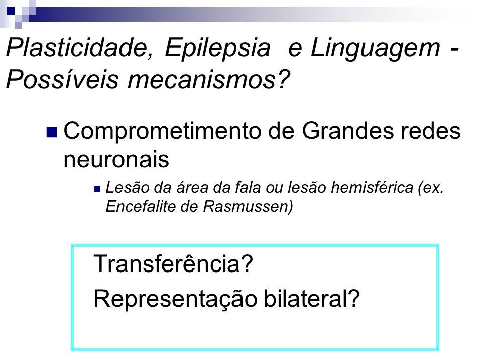 Plasticidade, Epilepsia e Linguagem - Possíveis mecanismos
