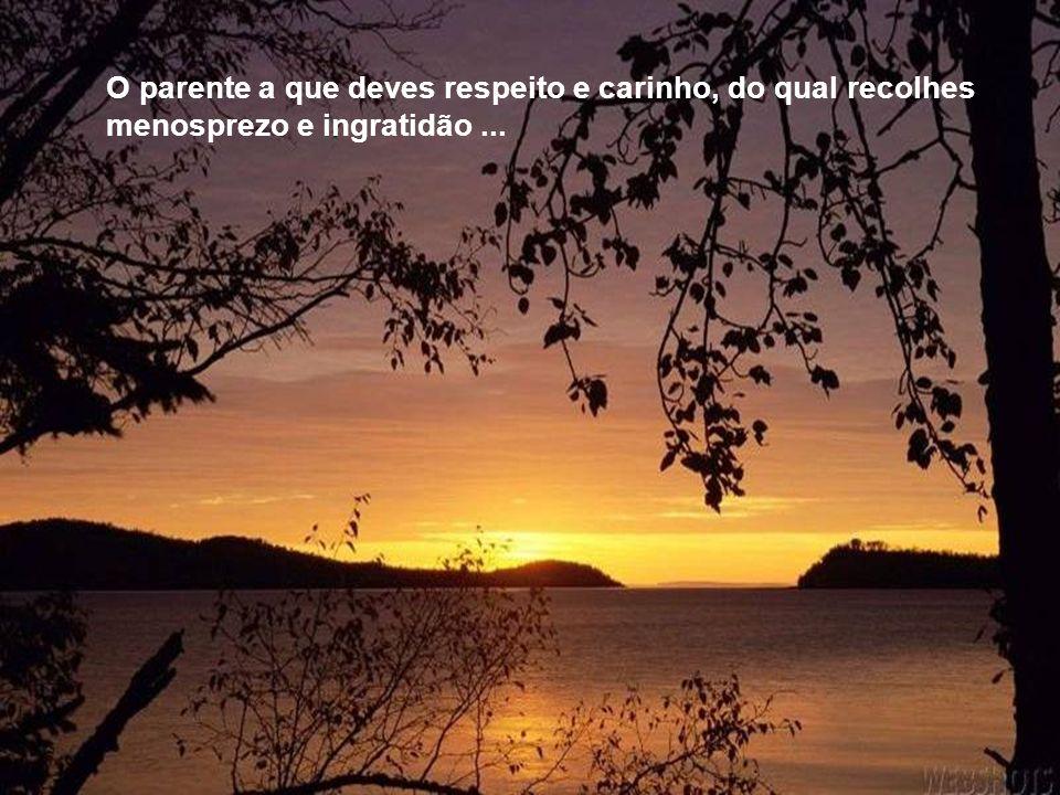 O parente a que deves respeito e carinho, do qual recolhes menosprezo e ingratidão ...