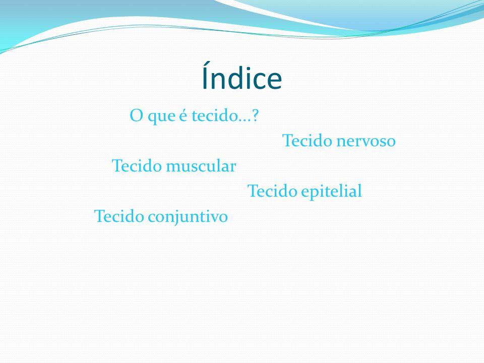 Índice O que é tecido... Tecido nervoso Tecido muscular Tecido epitelial Tecido conjuntivo