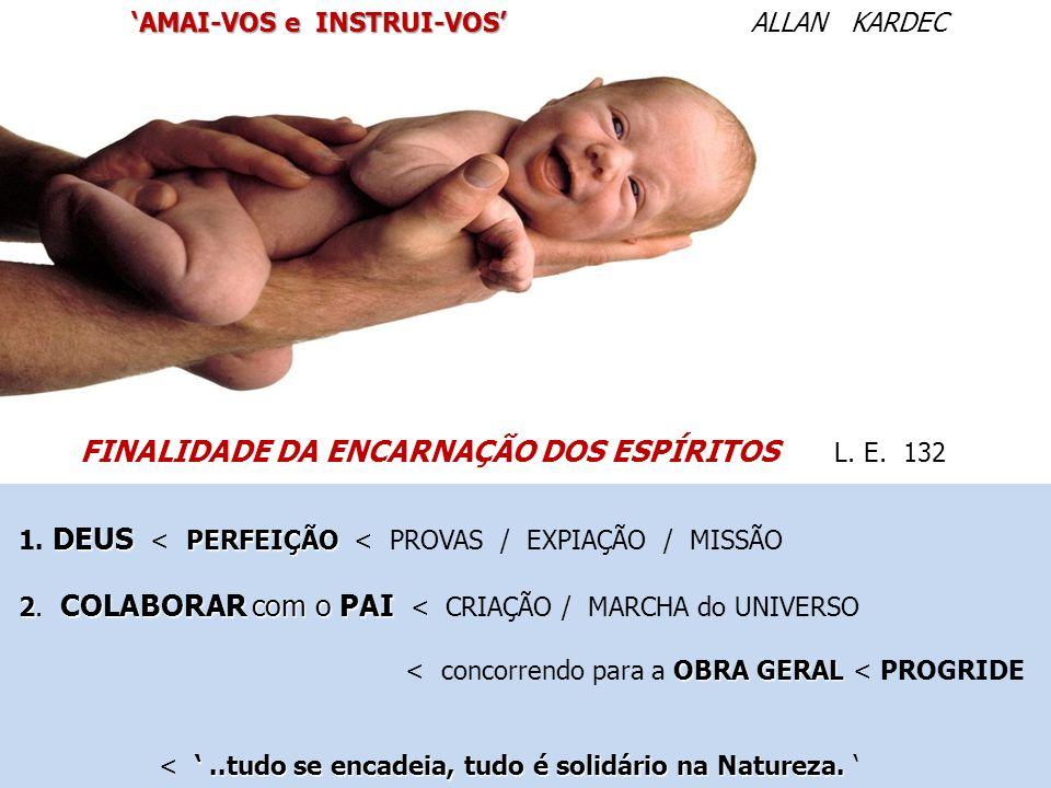 FINALIDADE DA ENCARNAÇÃO DOS ESPÍRITOS L. E. 132