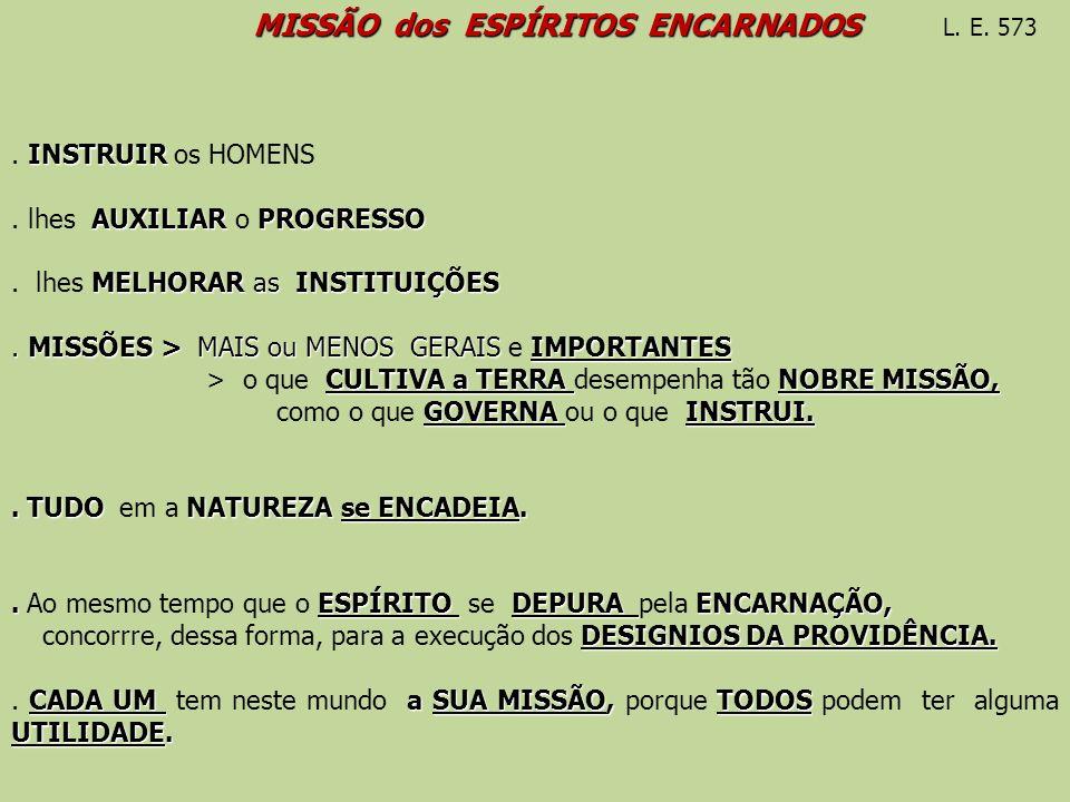 MISSÃO dos ESPÍRITOS ENCARNADOS L. E. 573