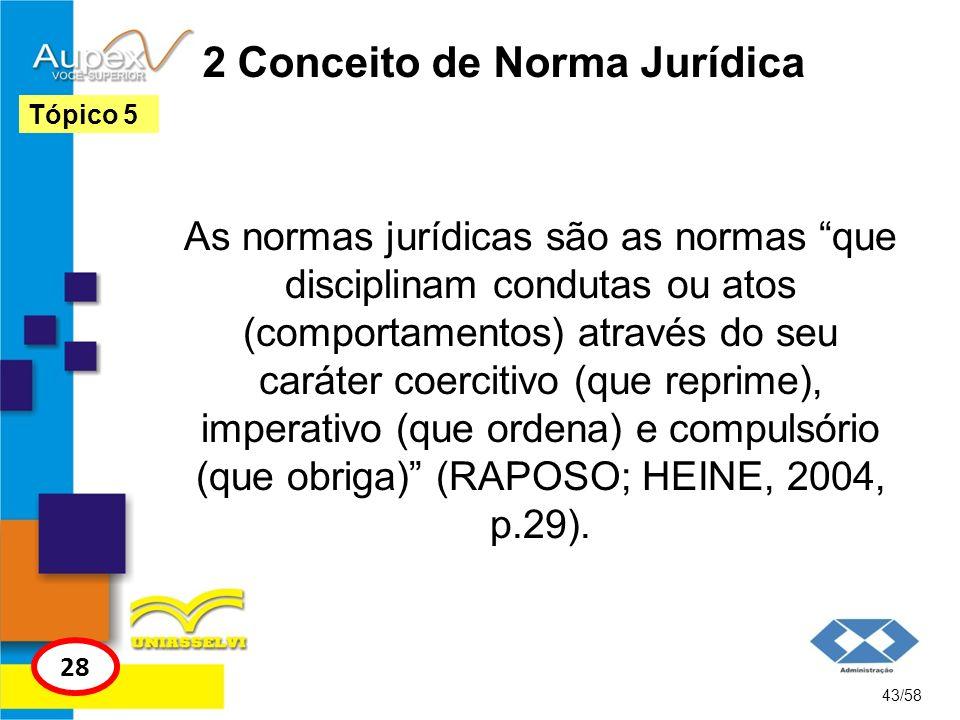 2 Conceito de Norma Jurídica
