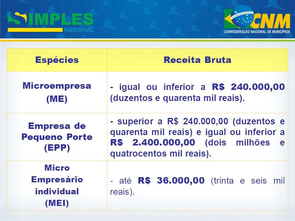 Empresa de Pequeno Porte (EPP)