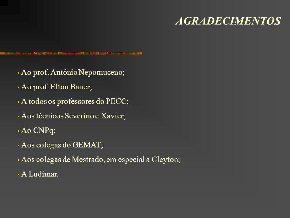 AGRADECIMENTOS Ao prof. Antônio Nepomuceno; Ao prof. Elton Bauer;