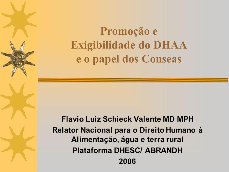 Promoção e Exigibilidade do DHAA e o papel dos Conseas