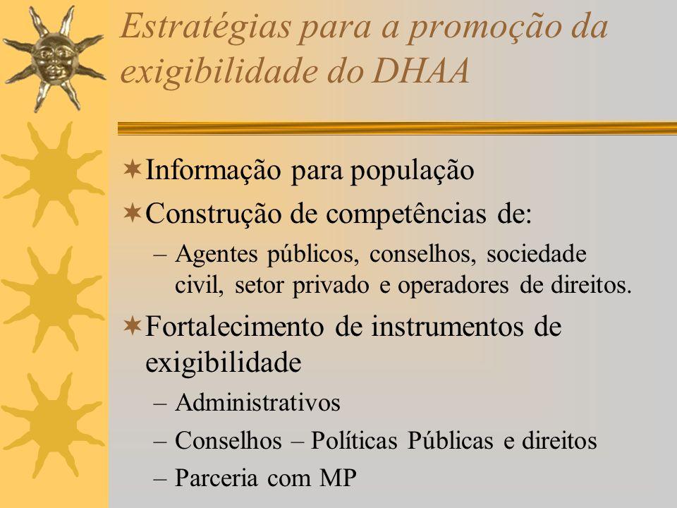 Estratégias para a promoção da exigibilidade do DHAA