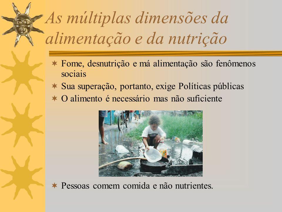 As múltiplas dimensões da alimentação e da nutrição