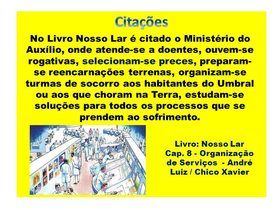 Cap. 8 - Organização de Serviços - André Luiz / Chico Xavier