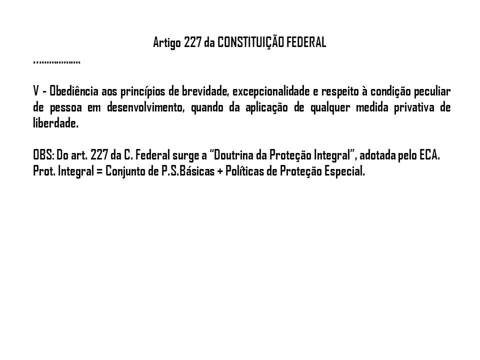 Artigo 227 da CONSTITUIÇÃO FEDERAL