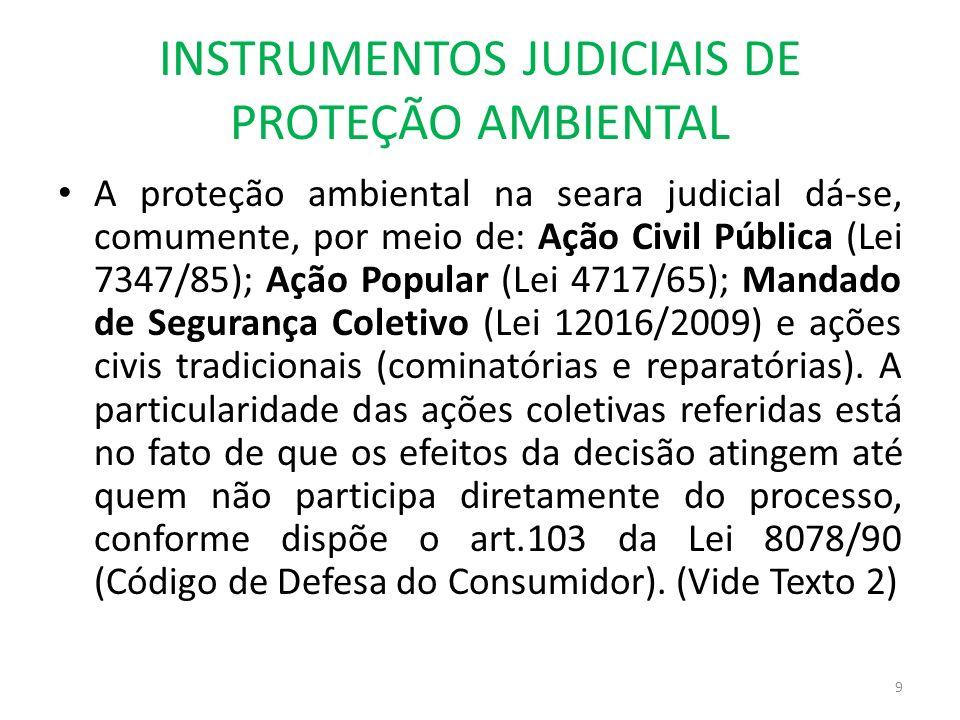 INSTRUMENTOS JUDICIAIS DE PROTEÇÃO AMBIENTAL