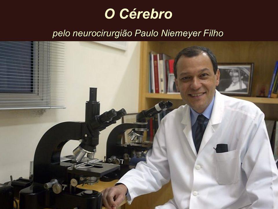 pelo neurocirurgião Paulo Niemeyer Filho