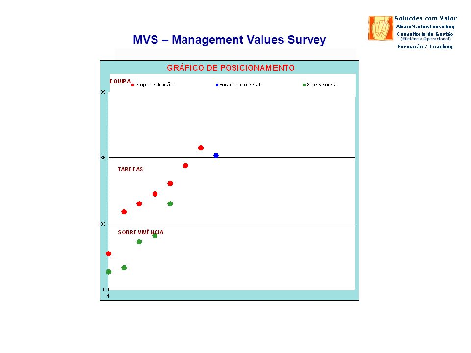 MVS – Management Values Survey