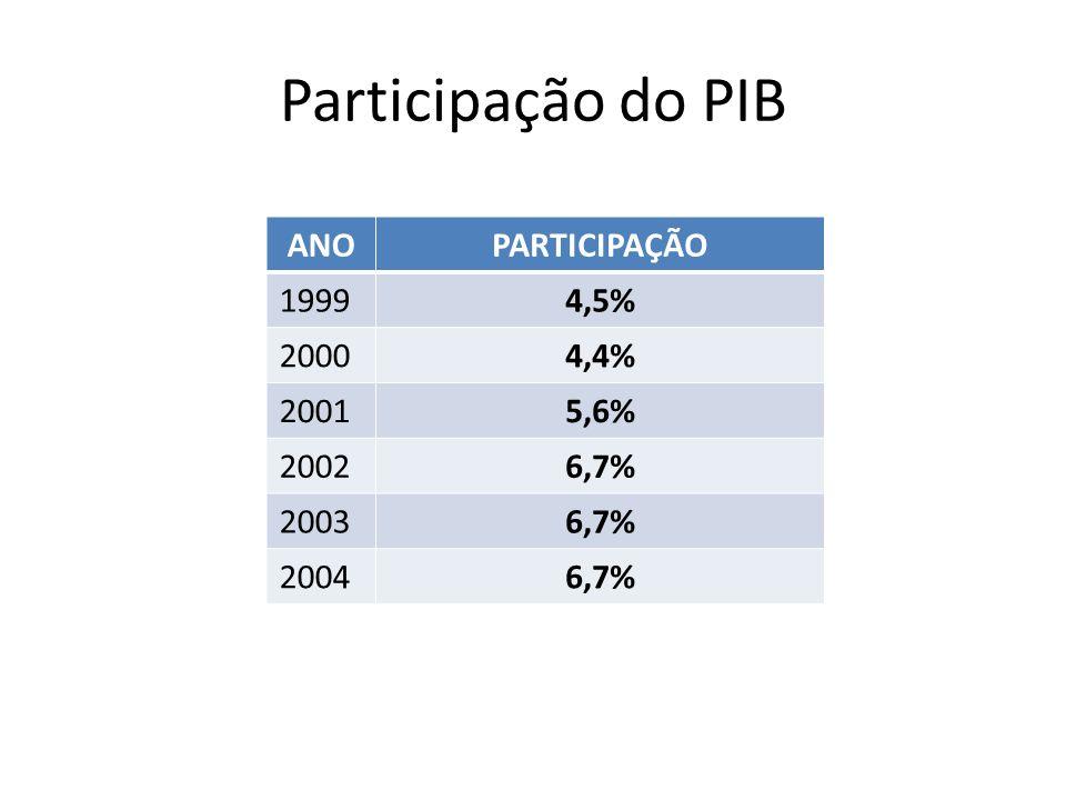 Participação do PIB ANO PARTICIPAÇÃO 1999 4,5% 2000 4,4% 2001 5,6%