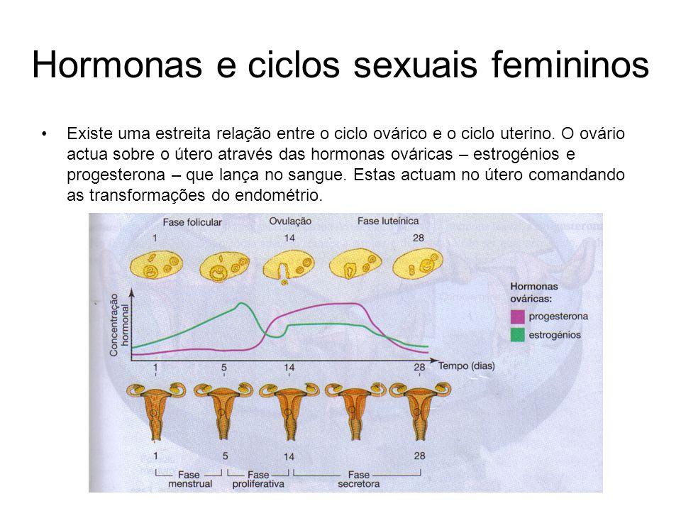 Hormonas e ciclos sexuais femininos