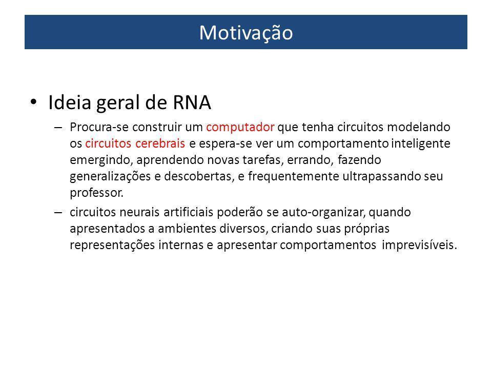 Motivação Ideia geral de RNA