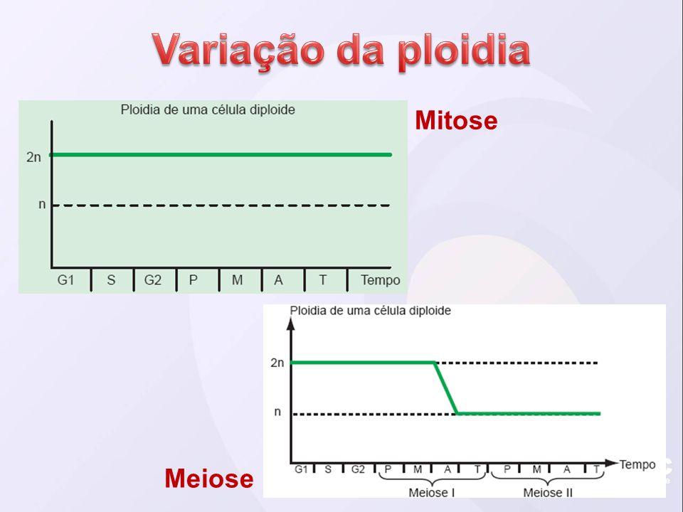 Variação da ploidia Mitose Meiose