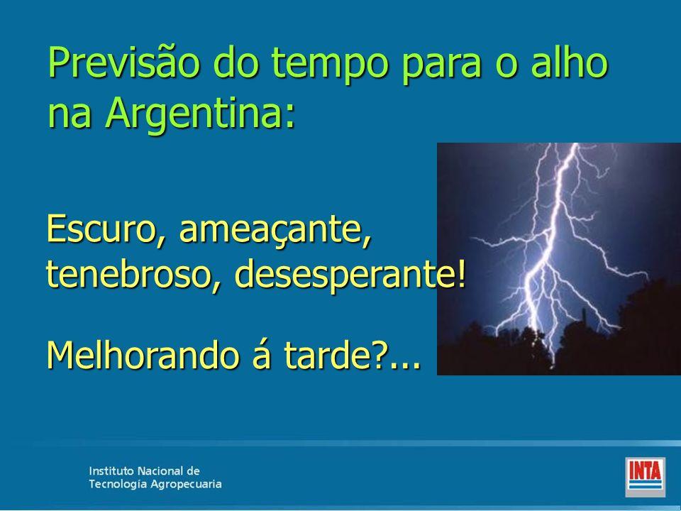 Previsão do tempo para o alho na Argentina: