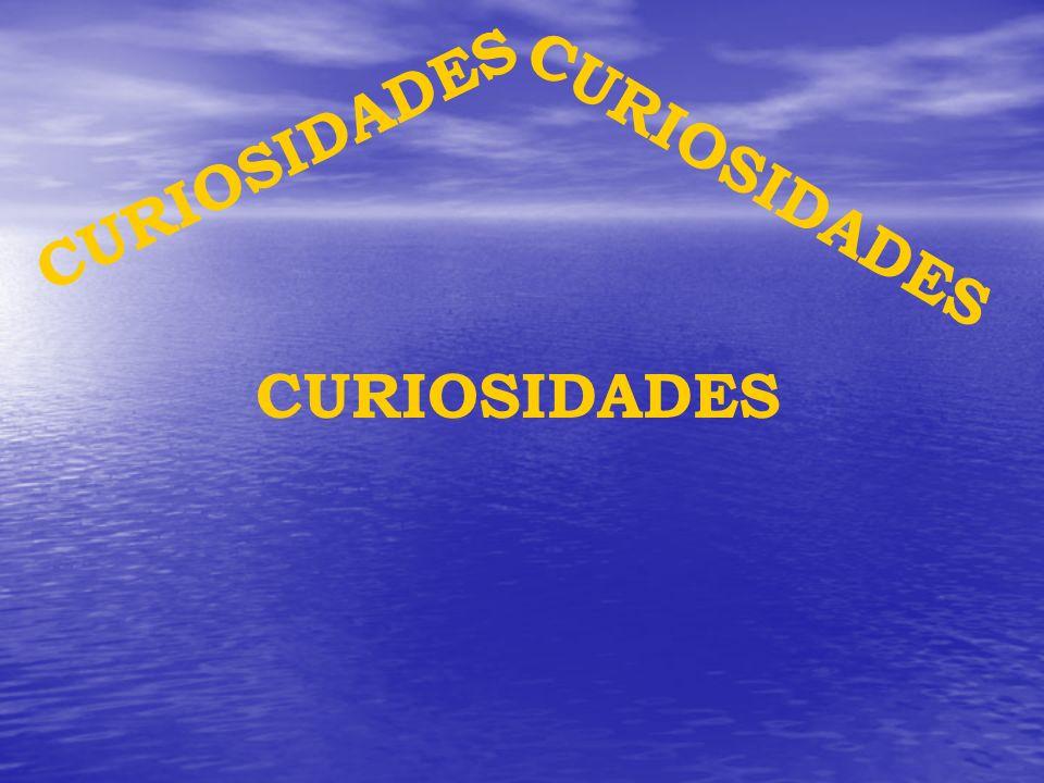 CURIOSIDADES CURIOSIDADES CURIOSIDADES