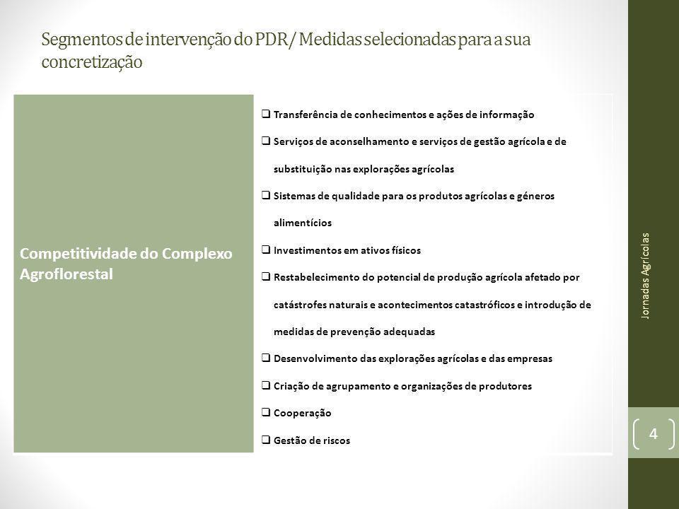 Segmentos de intervenção do PDR/ Medidas selecionadas para a sua concretização