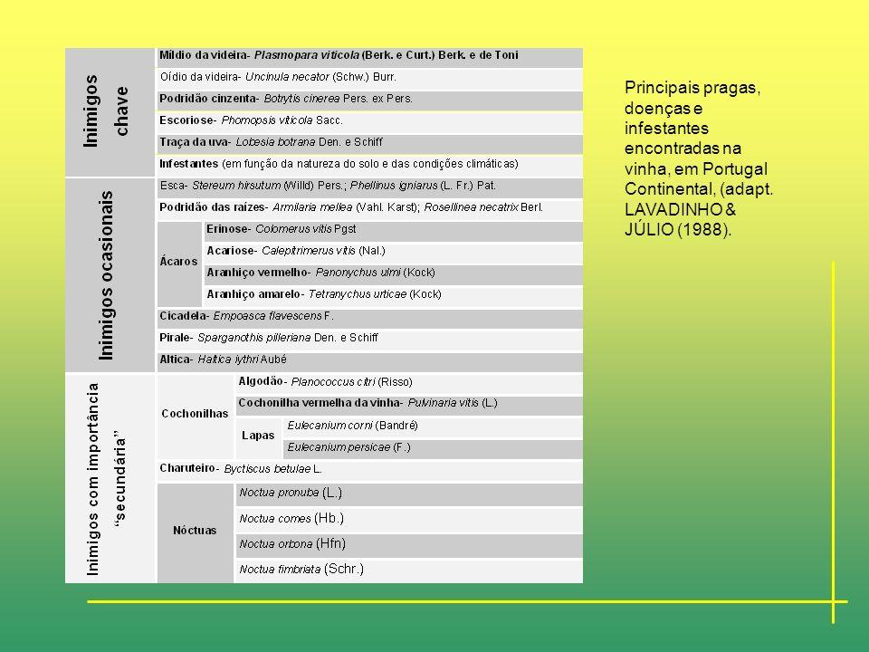 Principais pragas, doenças e infestantes encontradas na vinha, em Portugal Continental, (adapt.