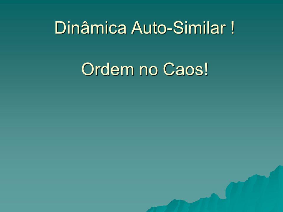 Dinâmica Auto-Similar ! Ordem no Caos!