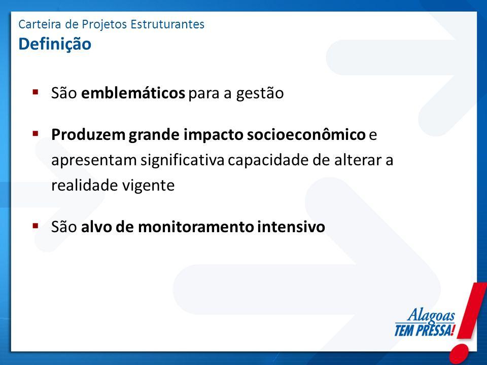 Carteira de Projetos Estruturantes Definição