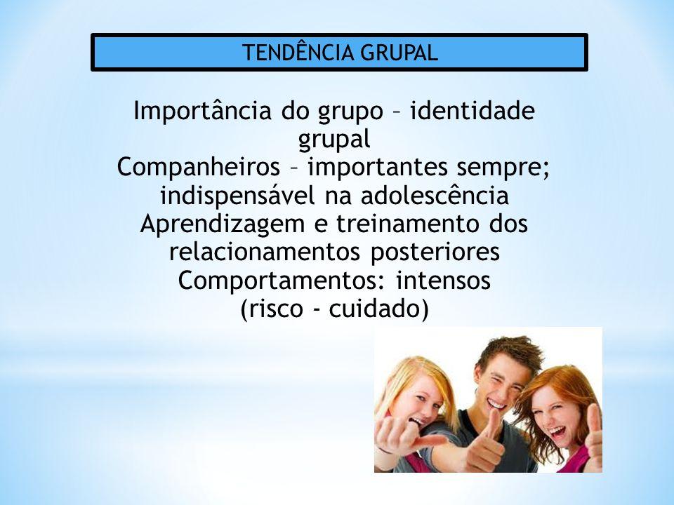 Importância do grupo – identidade grupal