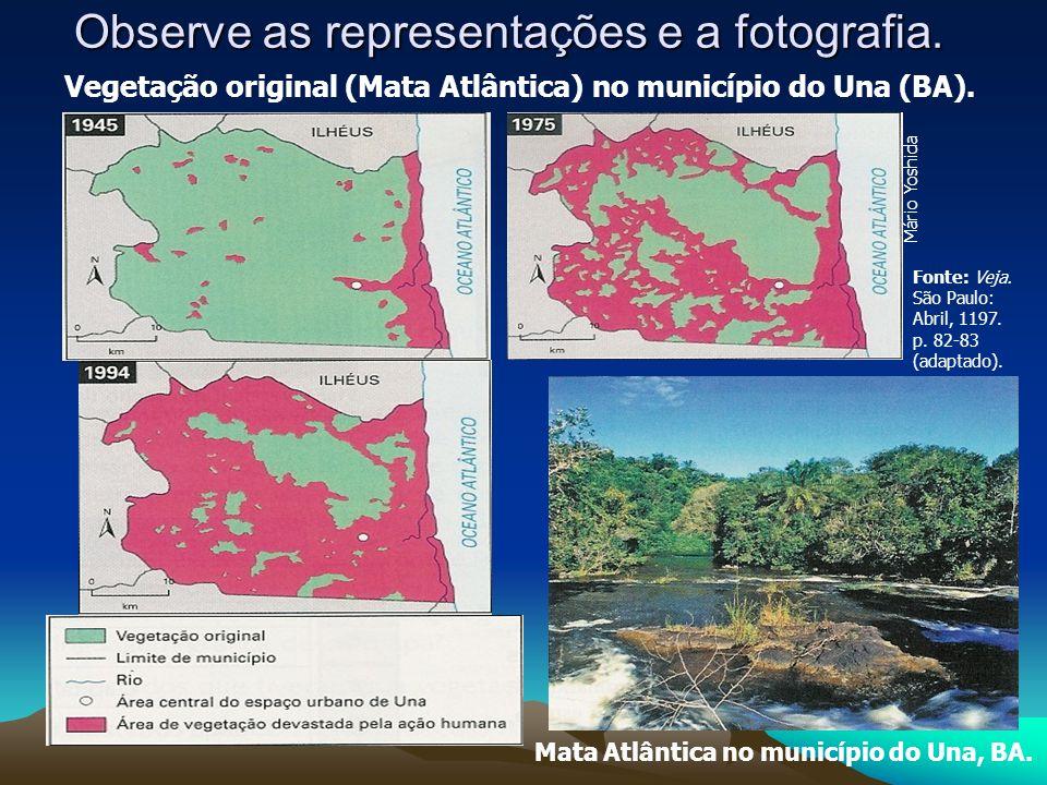 Observe as representações e a fotografia.