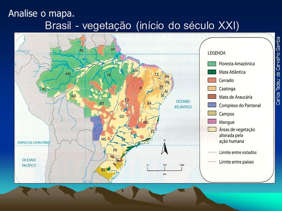 Brasil - vegetação (início do século XXI)