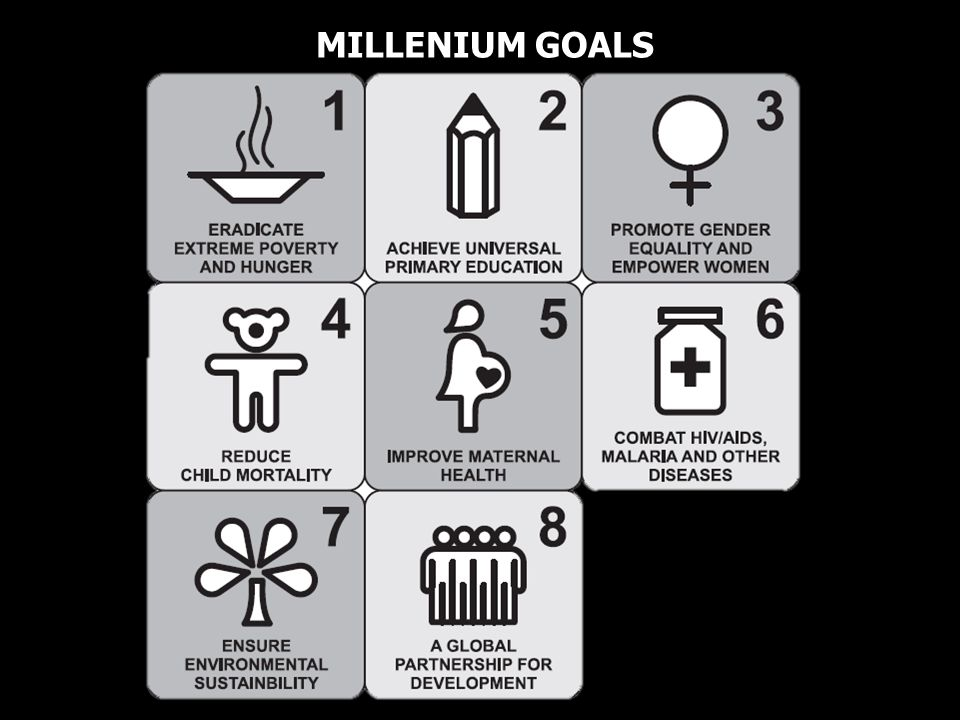 MILLENIUM GOALS
