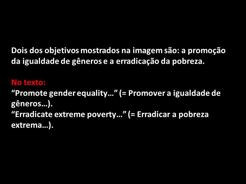 Dois dos objetivos mostrados na imagem são: a promoção da igualdade de gêneros e a erradicação da pobreza.