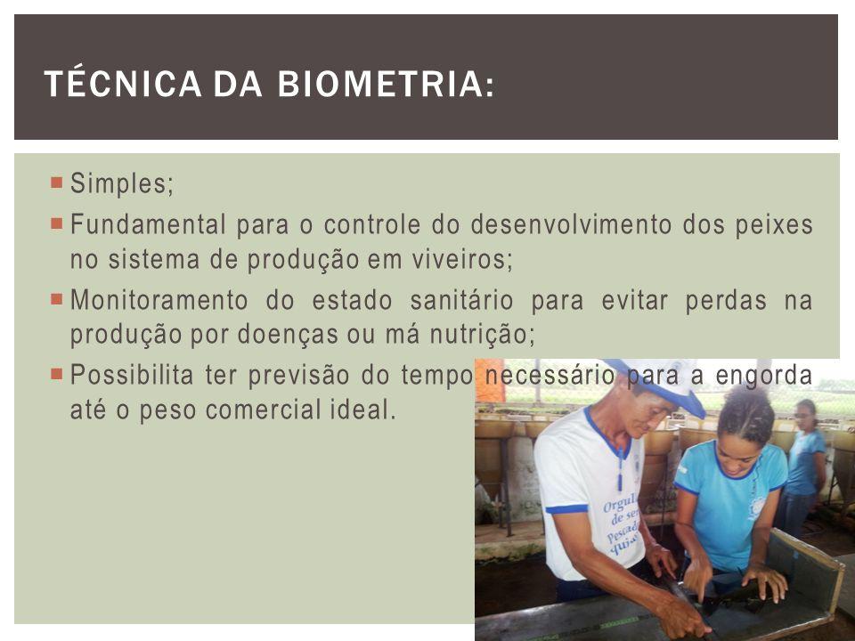 Técnica da Biometria: Simples;