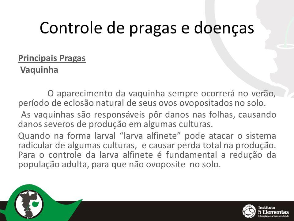 Controle de pragas e doenças