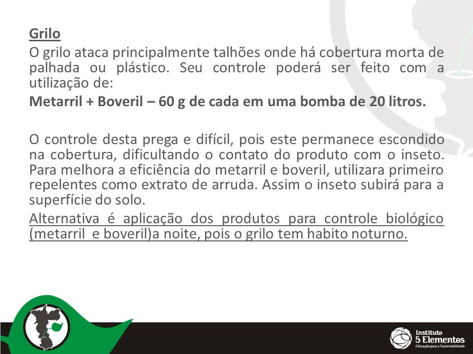Grilo O grilo ataca principalmente talhões onde há cobertura morta de palhada ou plástico. Seu controle poderá ser feito com a utilização de: